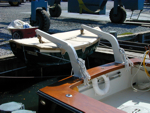 Duffy 35 with Voyager davits.
